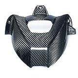 RACEFOXX Carbon Radabdeckung, Spritzschutz, Hinterrad Abdeckung, glänzend, für BMW S1000R / RR